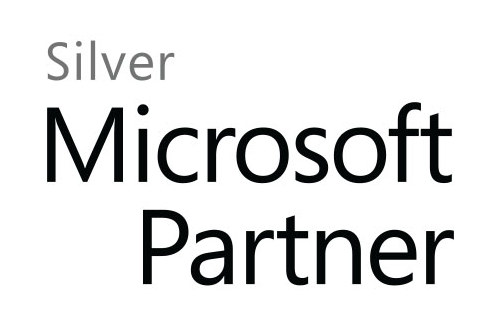 Microsoft Logo Silver
